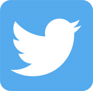 TwitterLogo_white